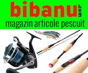 bibanu.com